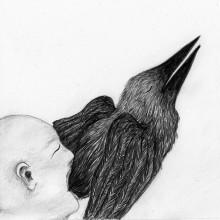Matière foetale oiseau